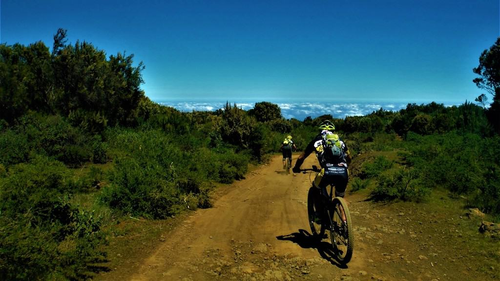 MTB 02. Between Niquiomo and the Teide  | 55€ | MTB + Speleology + Guide